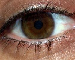 CS4K-Eye