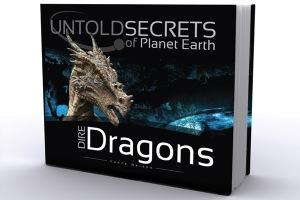 dire_dragons-book